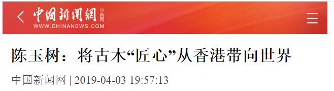 中新网.png